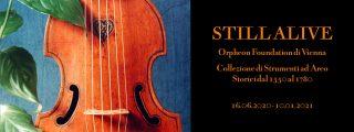 Still Alive – I preziosi strumenti ad arco della collezione Vázquez