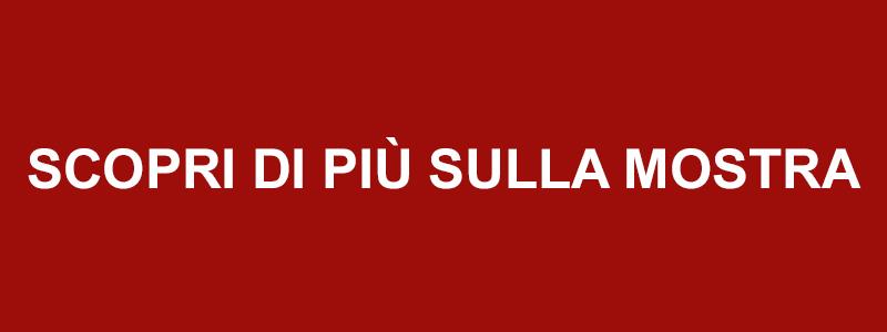 pulsante scopri polittico vt4