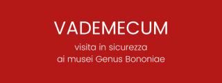 Vademecum – Visita in sicurezza ai musei Genus Bononiae